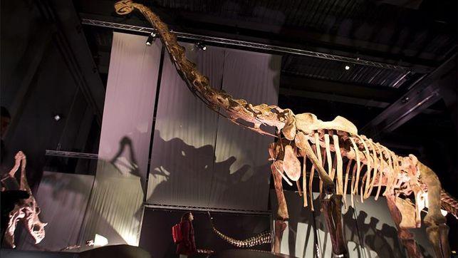Dinopolis-Arino-dedicado-carnivoros-Valcaria_EDIIMA20150201_0302_4