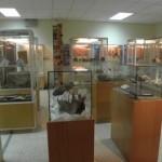el Museo Paleontológico de Zaragoza